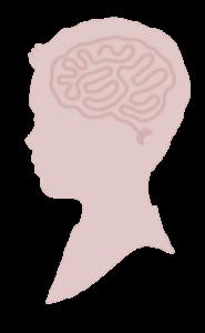 cerveau_maria_montessori-1
